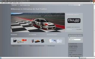 Audi Oline Part
