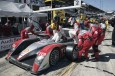 ALMS 01 - Sebring (USA) 2007