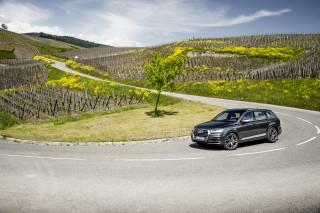 Audi SQ7_15