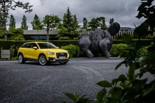 Audi Q2 TDI quattro_12