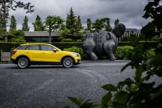 Audi Q2 TDI quattro_13