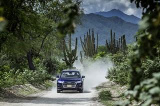 Audi Q5 2.0 TFSI quattro_25