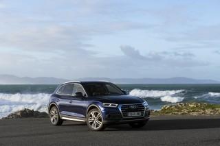 Audi Q5_26