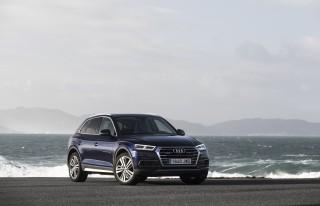 Audi Q5_30