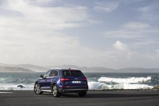 Audi Q5_31